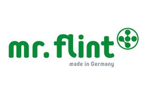 logo_mr_flint
